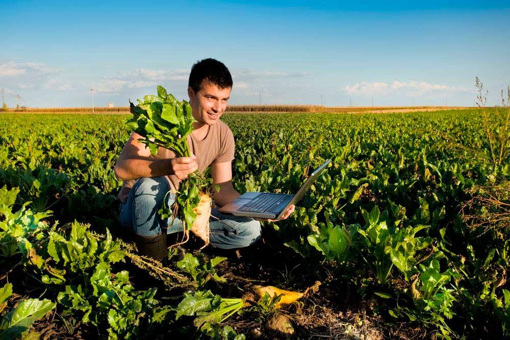 Foros virtuales para incorporar a jóvenes rurales de las Américas en la reconstrucción de la agricultura post covid-19