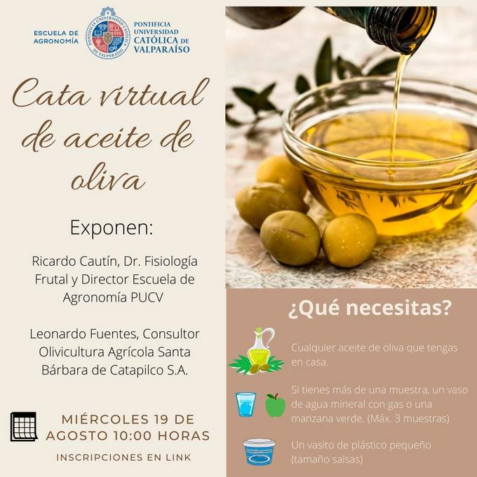 Webinar PUCV | Cata virtual de aceite de oliva