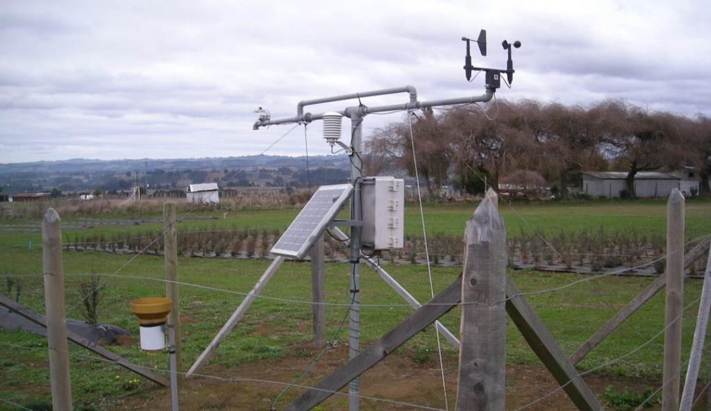 Expo Chile Agrícola: Sepa qué ocurre con el clima y cómo afecta la producción agrícola