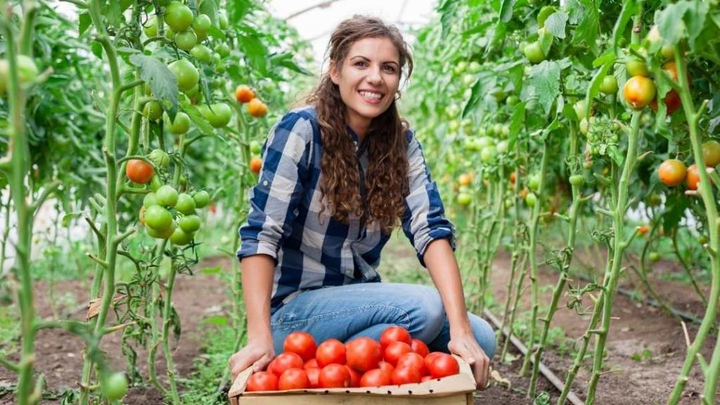 CNR anuncia nuevo curso online gratuito para mujeres agricultoras