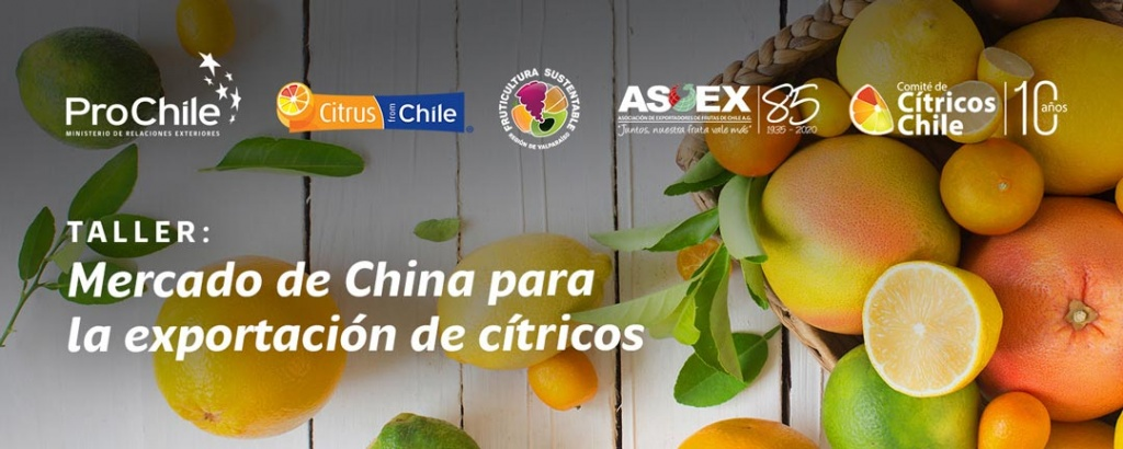 Taller Mercado de China para los Cítricos Chilenos